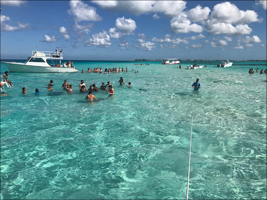 video: Stingray City, Grand Cayman