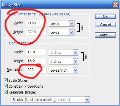Image size & resolution - 72dpi or 300dpi