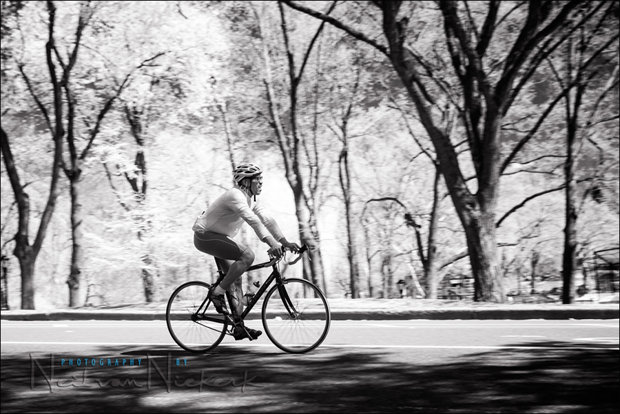 Canon 5d mark ii 830nm deep bw ir conversion by life pixel
