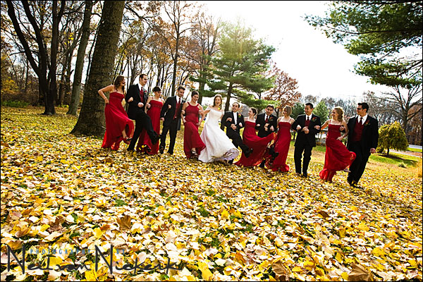 2008 overview – my favorite wedding images